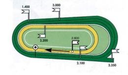 Plan des pistes de l'hippodrome de Strasbourg-Hoerdt