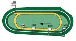 Plan des pistes de l'hippodrome de Toulouse-La Cépière
